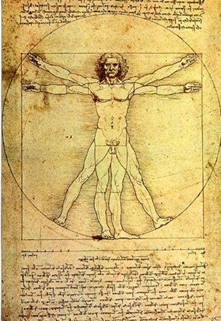 Leonardo - Vitruvian Man