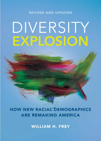 Cover of Diversity Explosion