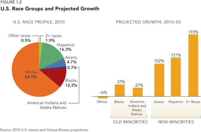 Graphs of US Race Groups and Projected Growth